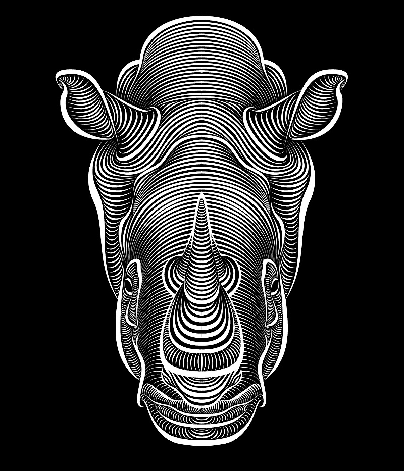 Drawing Lines In Rhino : Illustrations by patrick seymour showme design