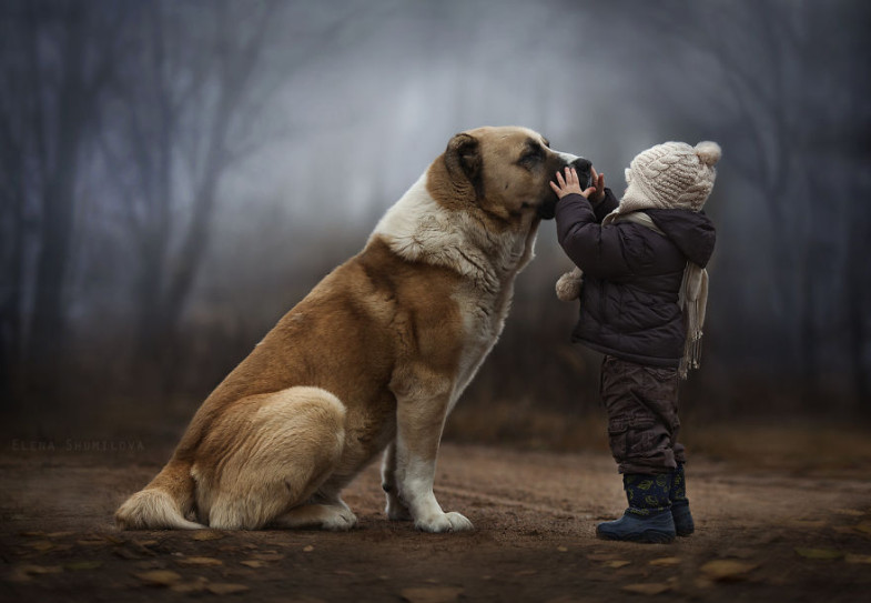 th_animal-children-photography-elena-shumilova-1