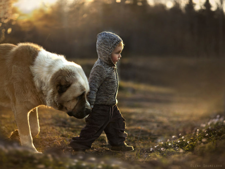 th_animal-children-photography-elena-shumilova-18