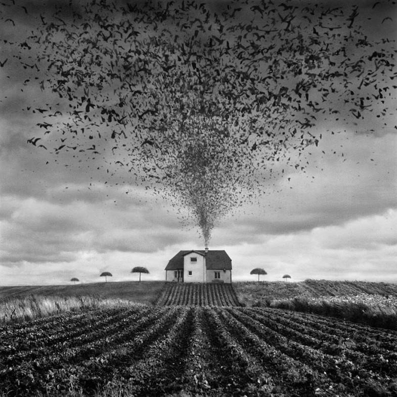 surreal-photo-manipulation-dariusz-klimczak-1