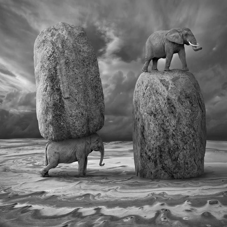 surreal-photo-manipulation-dariusz-klimczak-12