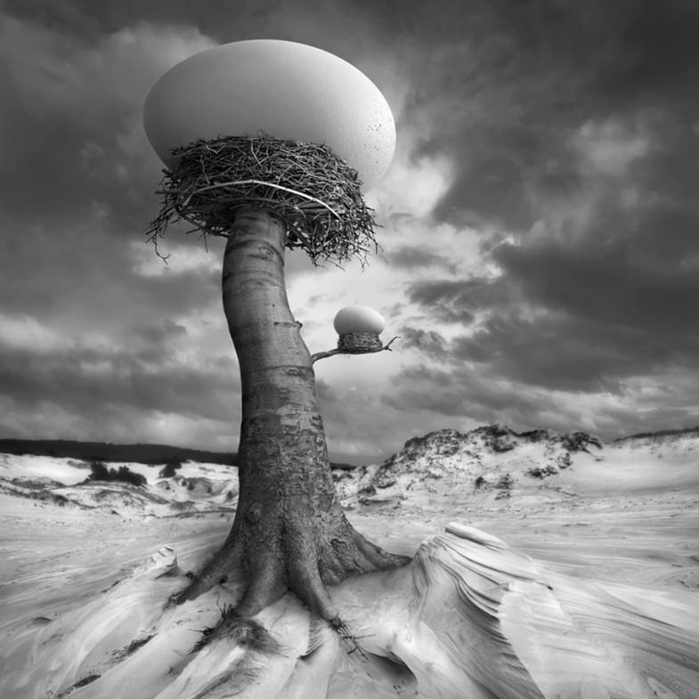 surreal-photo-manipulation-dariusz-klimczak-9