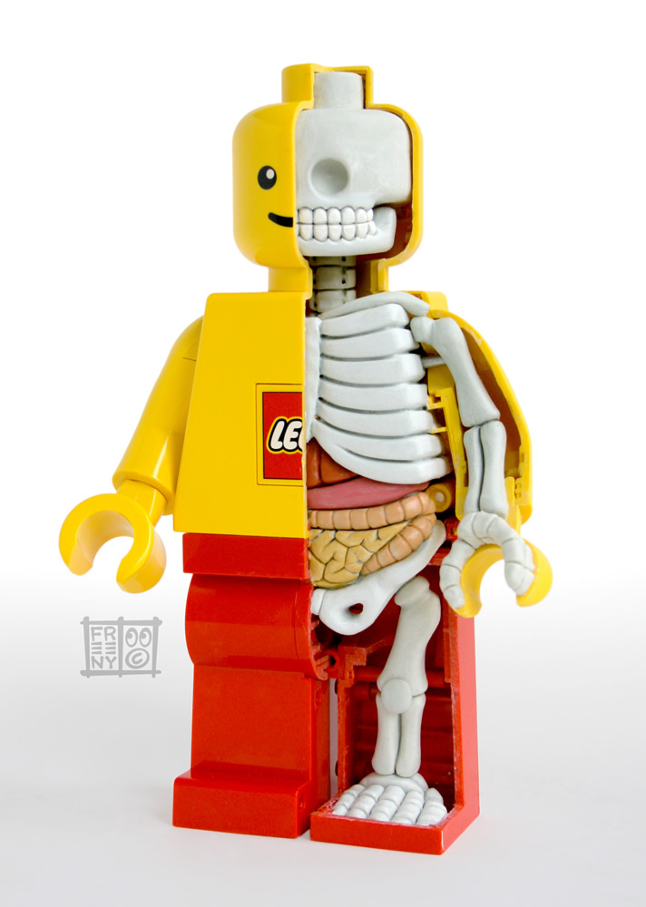 th_lego_mini_figure_anatomy_sculpt_by_freeny-d4gd9w4