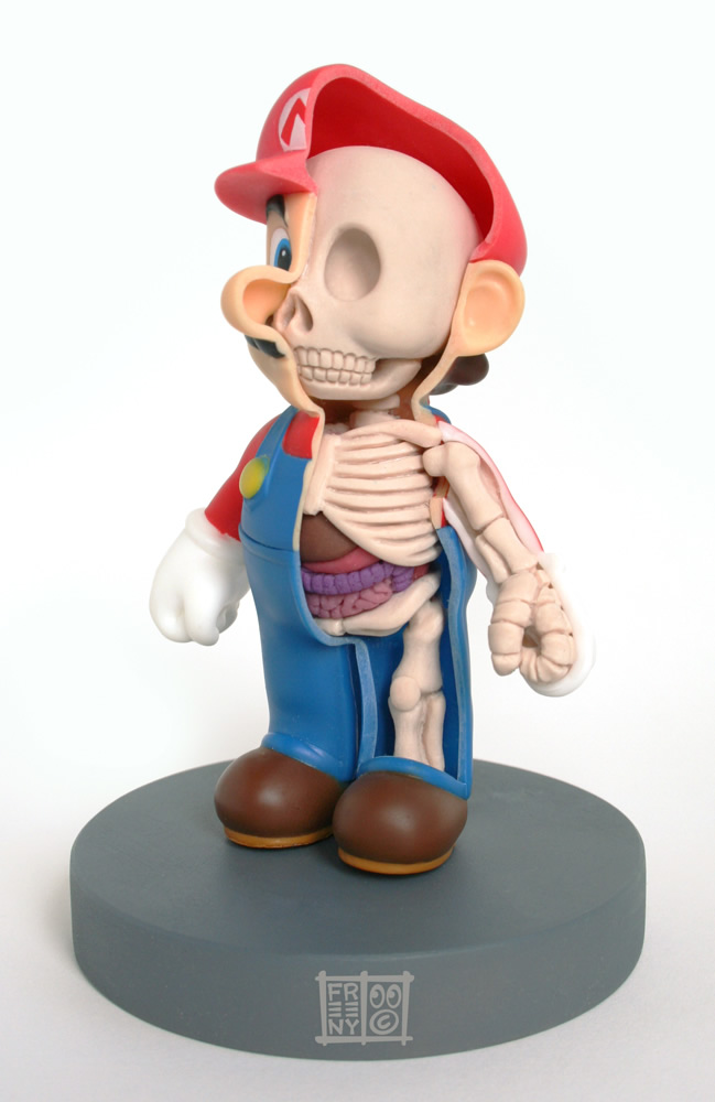 th_mario_anatomy_sculpt_model_by_freeny-d2yza0w