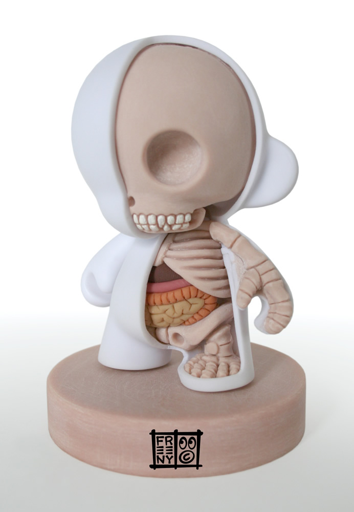 th_munny_dissection_by_freeny-d3diqoz