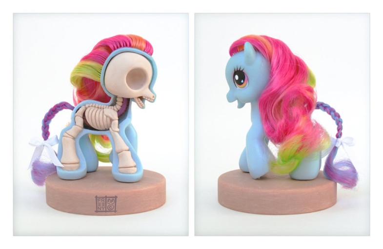 th_my_little_pony_anatomy_sculpt_by_freeny-d2zb8kh