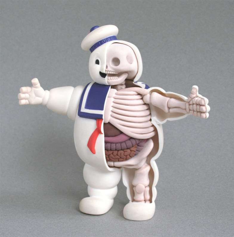 th_stay_puft_anatomy_sculpt_by_freeny-d2zue66